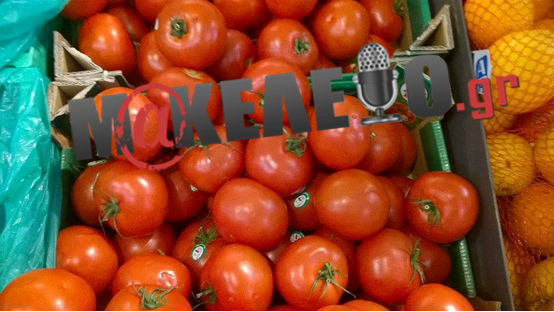 βασιλοπουλος ντοματες 1