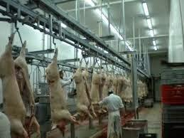 ΔΙΑΤΡΟΦΙΚΗ ΒΟΜΒΑ – Τι κρύβεται πίσω από τα κρέατα που πωλούνται ως εκλεκτά φιλέτα; (ΒΙΝΤΕΟ)