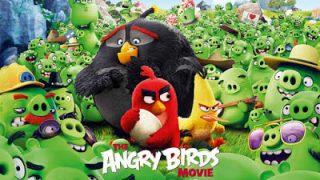 Angry-Birds-final-quad