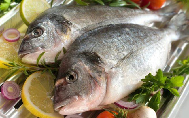 fish.medium