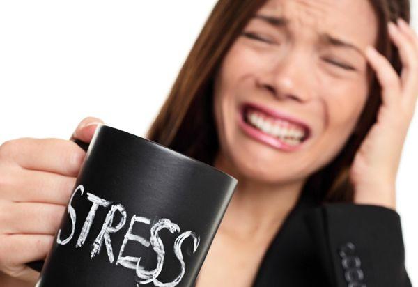 stresscortisolobesityromanou