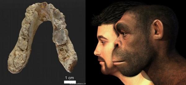 Πρώτος-άνθρωπος-στην-Ελλάδα-600x275