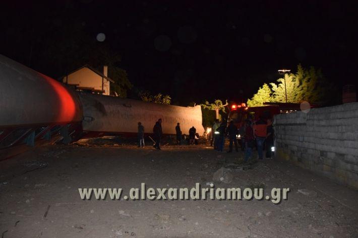 alexandriamou_treno_adendro012