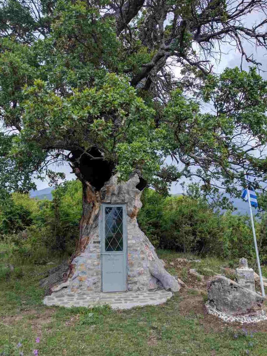 Εντυπωσιάζει το εκκλησάκι που χτίστηκε μέσα σε δέντρο 300 ετών