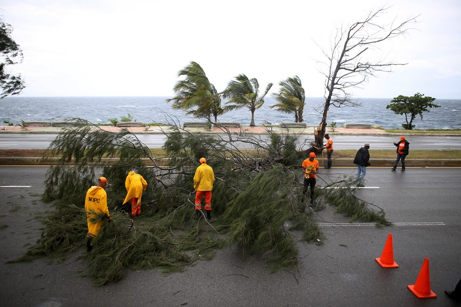 epa06190747 Public Works staff remove a fallen tree at the esplanade in Santo Domingo, Dominican Republic, 07 September 2017. The Dominican Republic increased the number of provinces under red alert for hurricane Irma from 17 to 24. EPA/Roberto Guzman