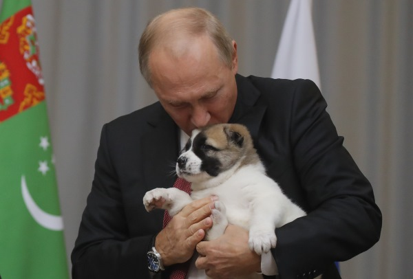 putin_dog4