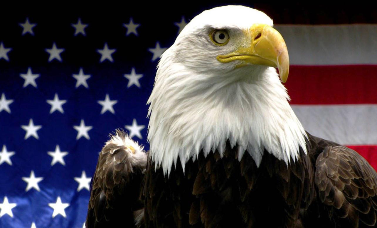 usa-eagle2-1