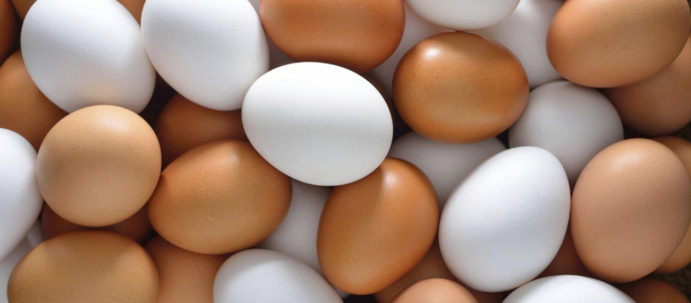 bedfecd5fe12 Άσχημα τα νέα για όσους λατρεύουν τα αυγά – Makeleio.gr
