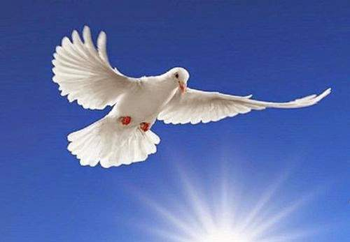 Άγιο-Πνεύμα2