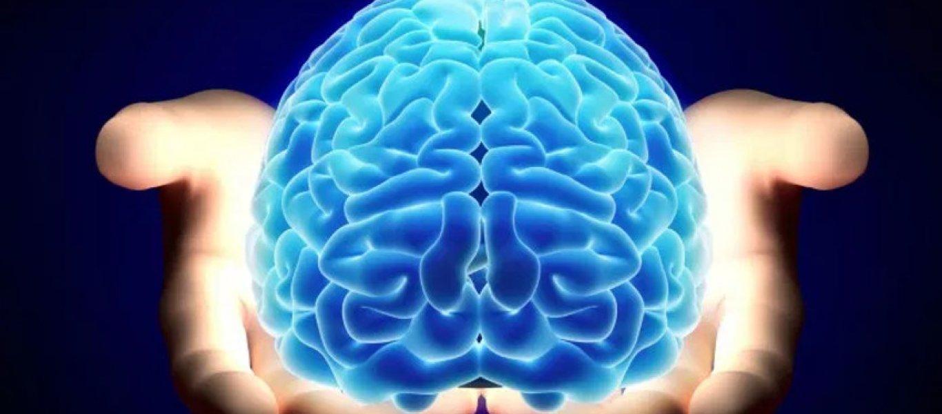 brain-850