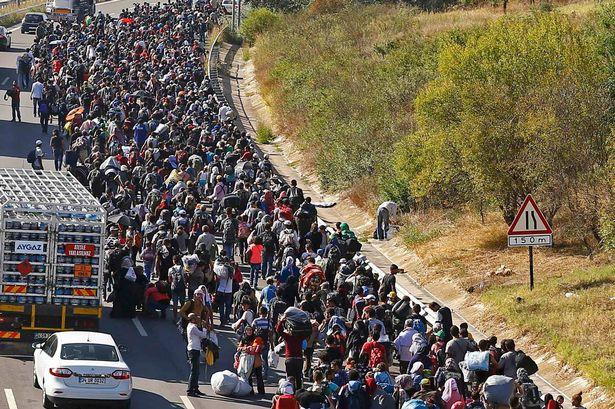 Migrants-walk-towards-the-Greek-border-on-a-highway-near-Edirne-Turkey-1