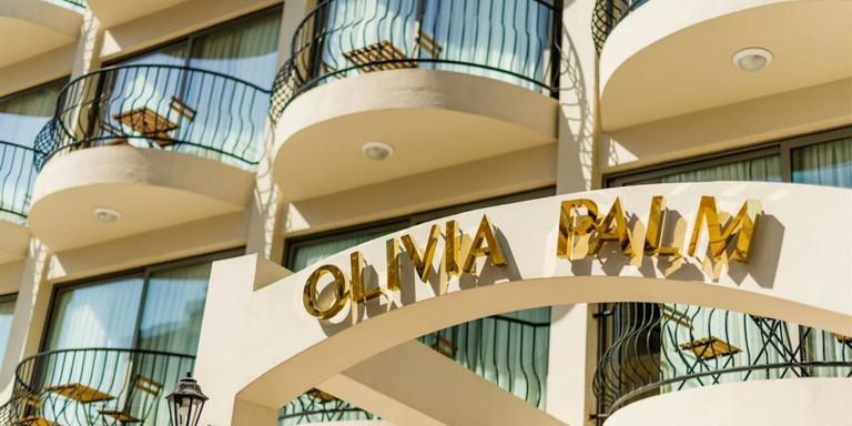 olivia-palm