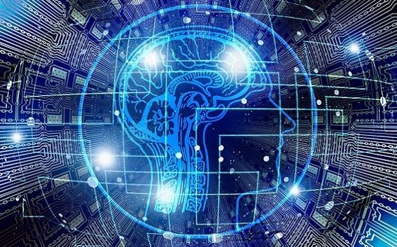brain.network