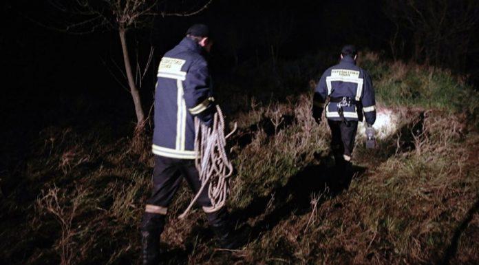 Συναγερμός στην Εύβοια, εξαφανίστηκαν δύο νεαροί που πήγαν να μαζέψουν μανιτάρια