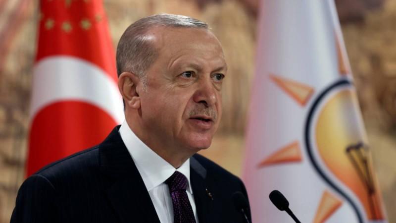 erdogan_ploia