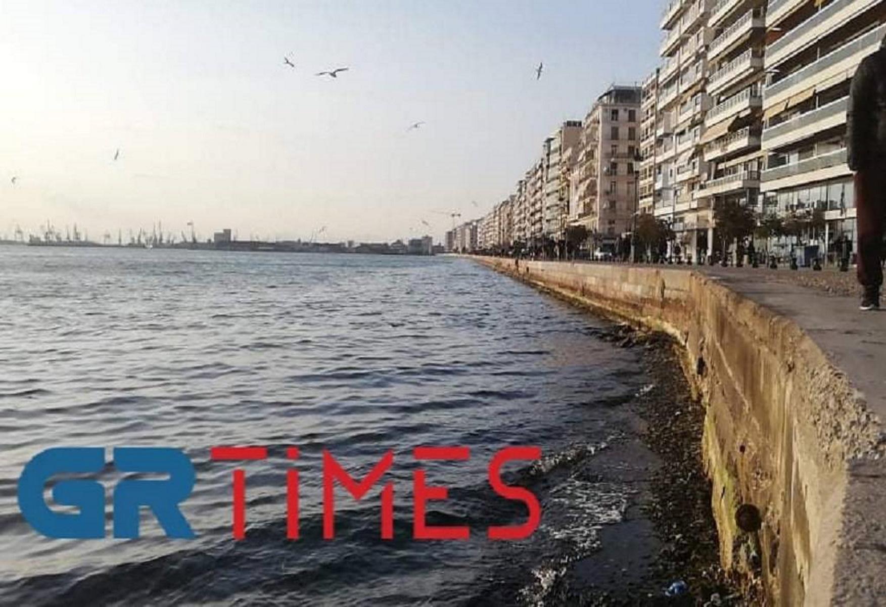 Thermaikos_amboti_grtimes_06_03_2021