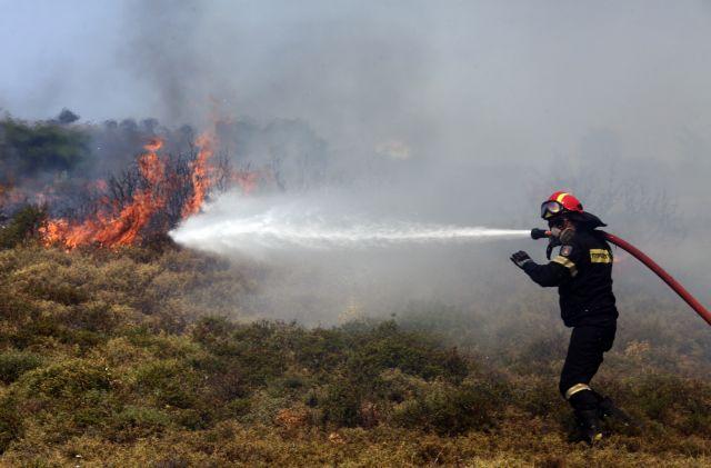 Πυροσβέστης επιχειρεί στην κατάσβεση της πυρκαγιάς που μαίνεται γύρω από τα σπίτια στο Μετόχι Καπανδριτίου, τη Δευτέρα 14 Αυγούστου 2017. Μάχη για να σταματήσουν την πύρινη λαίλαπα στην παραλία του Βαρνάβα και να μην επεκταθεί προς το Γραμματικό, δίνουν αυτή την στιγμή, όλες οι επίγειες και εναέριες δυνάμεις στο μέτωπο αυτό της μεγάλης καταστροφικής πυρκαγιάς που μαίνεται από χθες στην Ανατολική Αττική. Από το πρωί επιχειρούν 2 πυροσβεστικά αεροπλάνα και ένα ελικόπτερο ενώ θα επιχειρήσουν άλλα δυο ελικόπτερα. Από επίγειες δυνάμεις επιχειρούν 150 πυροσβέστες με 68 οχήματα, άλλα 15 οχήματα εθελοντικά, 58 άτομα πεζοπόρα τμήματα, 13 οχήματα των δήμων και της περιφέρειας, 6 οχήματα της ΕΥΔΑΠ και τρία μεγάλα χωματουργικά μηχανήματα.