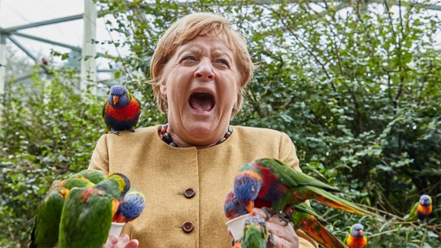 merkel-papagaloss